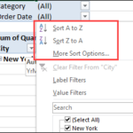 Pivot Table Report Filter Sort Macro Saves Time