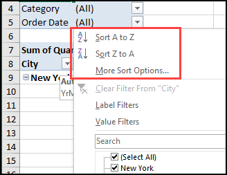 pivot table report filter sort macro